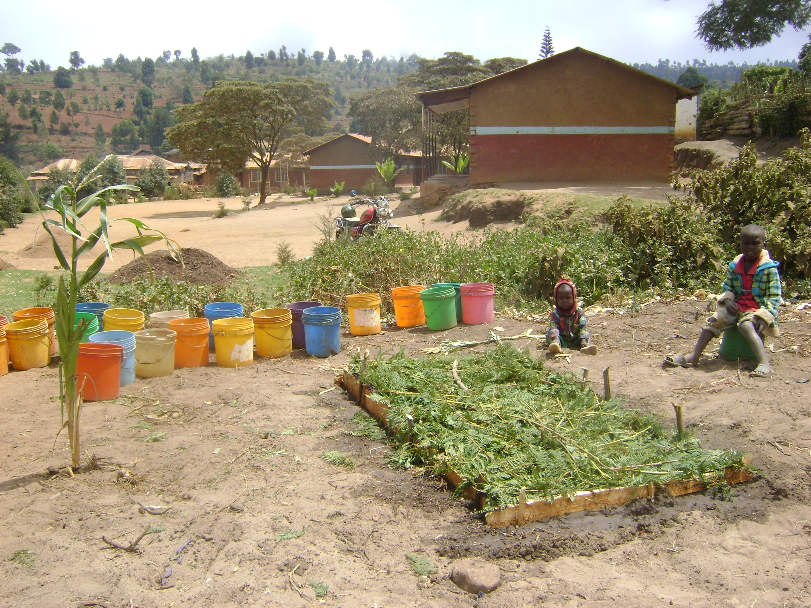 tree-nursery-at-mlifu-primary-school