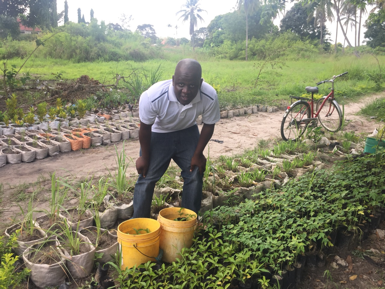 The project manager Ibrahim Hussein had to set up an alternative tree nursery when he realized that the Uwako Farmer Cooperative couldn't reach their targets.